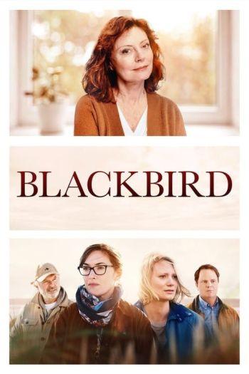 blackbird-a-despedida