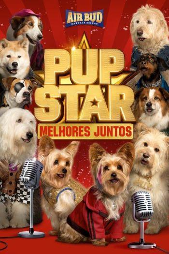 estrelas-caninas-a-uniao-faz-a-forca