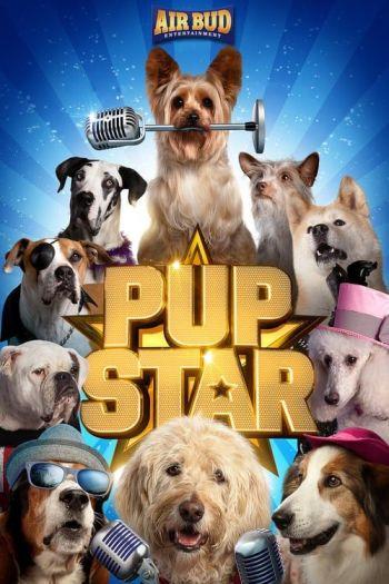 estrelas-caninas